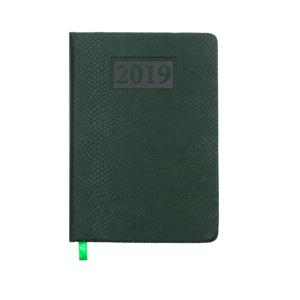 Ежедневник А6 карманный датированный 2019 AMAZONIA зеленый, серебряный срез