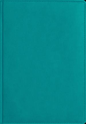 Обложка ФЕДЕРИКО светлая морская волна